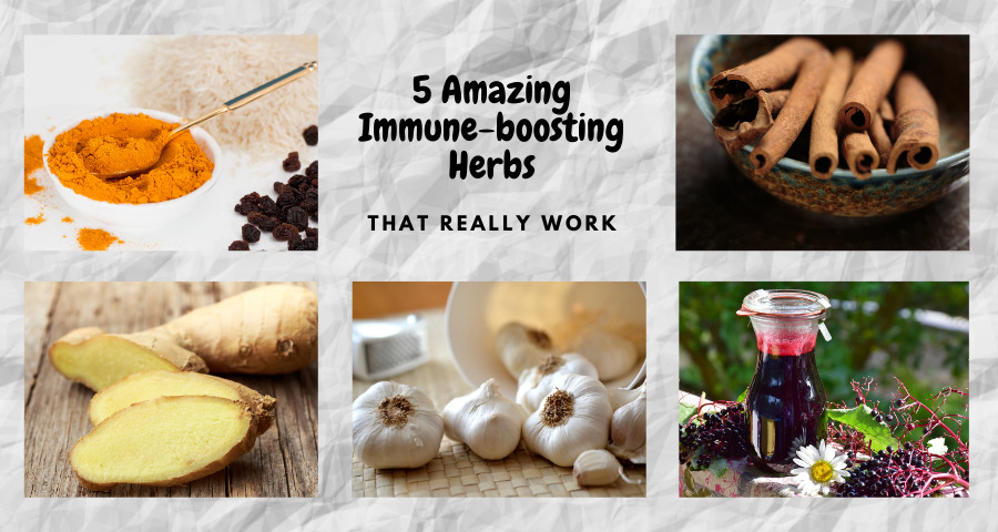 5-amazing-immune-boosting-hebs