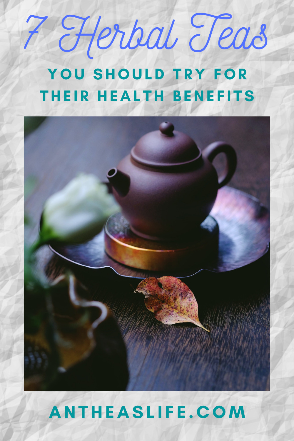 7-herbal-teas-you-should-try