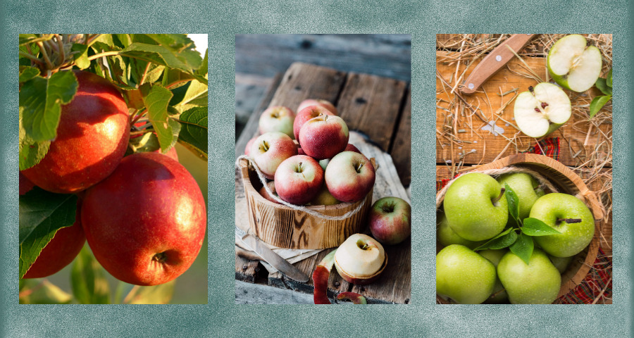 10-health-benefits-of-apples