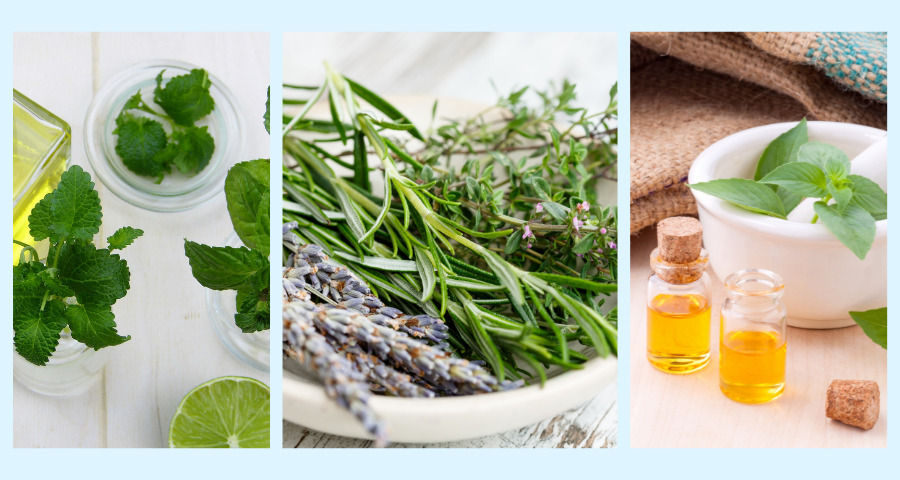 5-top-essential-oils-for-headaches